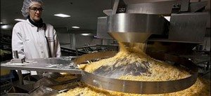 stainless steel food production equipment